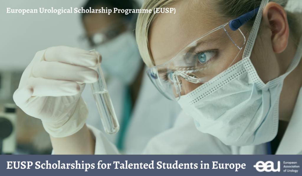 Photo of EUSP International Scholarships in Europe 2020