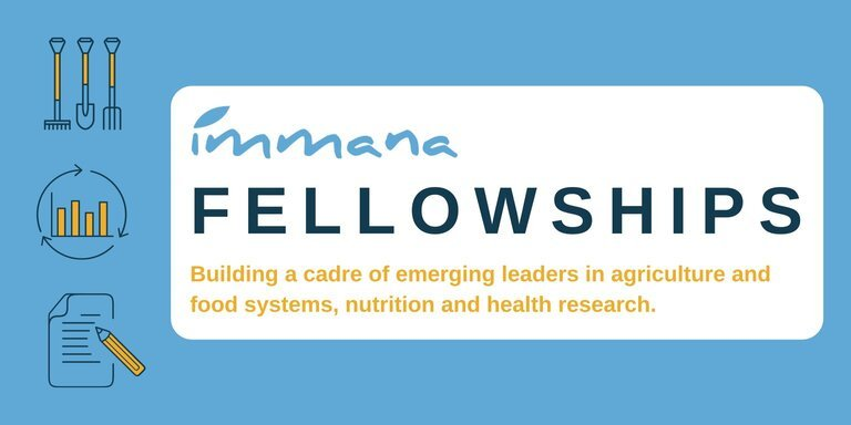 Photo of IMMANA Fellowships for Emerging Leaders in UK 2021