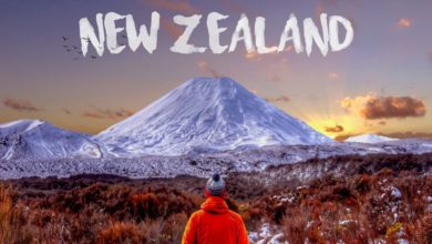 Photo of Studying Abroad in New Zealand – Things to Know