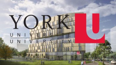 Photo of VISTA Postdoctoral Fellowships at York University in Canada 2021
