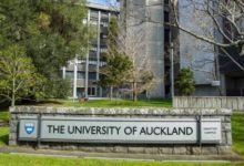 Photo of University of Auckland Research Masters Scholarship in New Zealand 2021