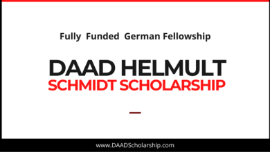 Photo of DAAD Helmut-Schmidt Scholarships in Public Policy in Germany 2021